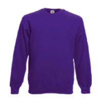 Adult Raglan Sweatshirt